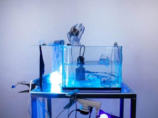 aquarium-4-small_orig